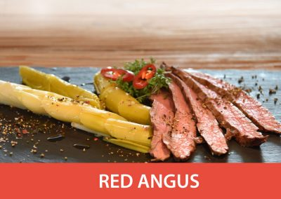 red_angus